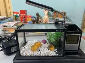Mini aquarium with inbuilt filter , light  & also has decorations