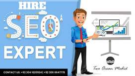 "We are looking for ""SEO Expert"" - Minimum 2 Year Experience"