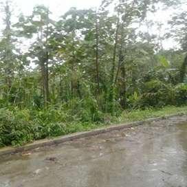 Dijual/sewa lahan Tanah Cocok untuk rumah vila , peternakan, berkebun