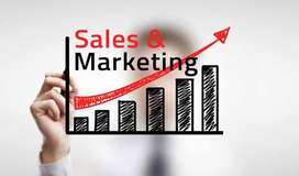 Looking for Sales and marketing executive
