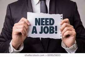 I need job as a sales and market executive/manager