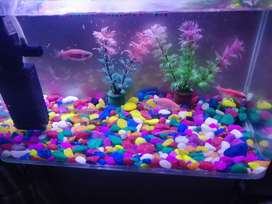 Aquarium fish Extra clear glass 1feet.