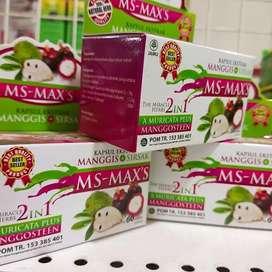 Bissmillah Ridyy Ekstrak Manggis + Sirsak MS-MAXS.