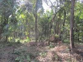 For rental 5 gunta property in gokarna