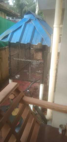 Very good strong bird cage for sale