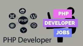 We want PHP Developer .