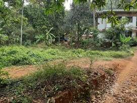 Housing  plot