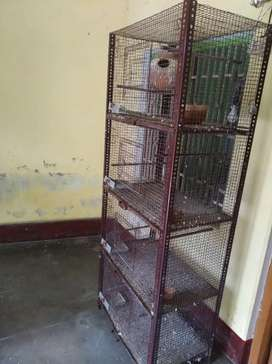 4 in 1 Cage, Suitable for Bird