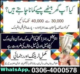 Students/teachers,Part time/Full time/Home base,(Male/Females), Online