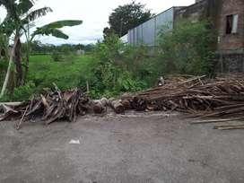 Tanah sawah sidokarto
