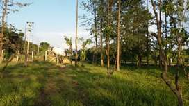 Land for rent in sarjapur Road near dommasandra circle