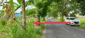 Tanah Sawah Murah Lokasi Strategis di Godean, Sleman