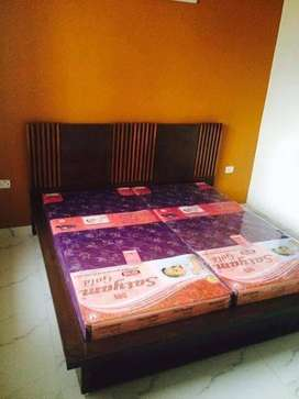1 BHK Apartment for Sale in Sector 67 Ansal Essencia, Gurgaon
