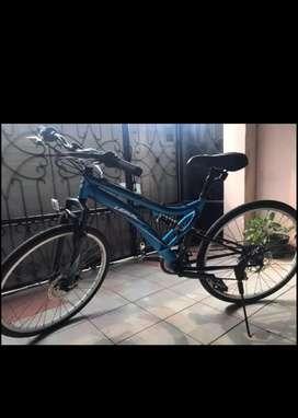 Sepeda MTB polygon lerun 250