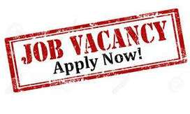 Dear Candidates, Hiring candidates for full time job in AUTO MOBILE CO