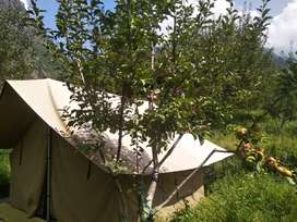 Camping tant