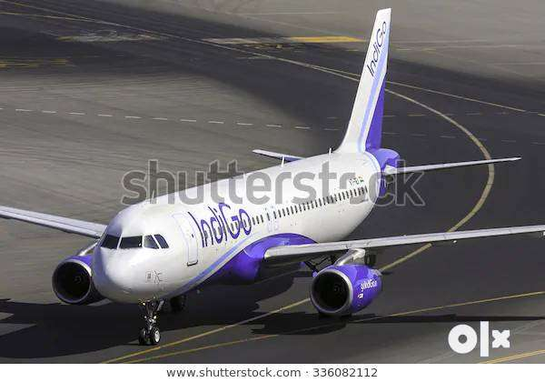 Airlines Job/Indigo Airlines Opened @ CCE , Cabin Crew, Luggage Dept. 0