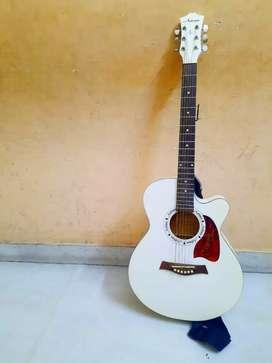 Acoustic European guitar (Astreae)