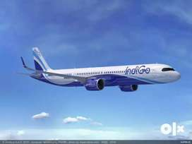 Description vacancy open for Airport  jobs indigo airlines -Make your