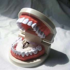 Female Dental assistant