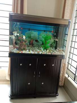Imported Fish Tank