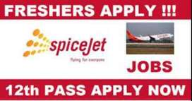 Airport ground staff and ticketing executive jobs