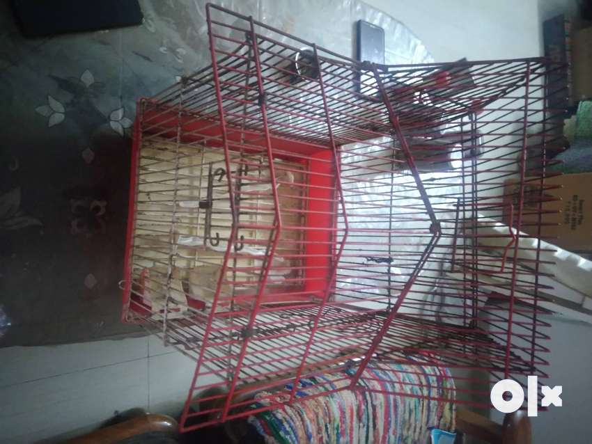 Bird Cage in Great Condition 0