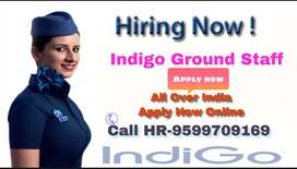 Indigo Airlines Hiring for staff fresher nd experience candidate must