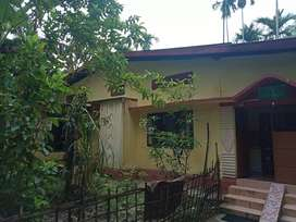 A plot of land 4 kathas with an assam type house..