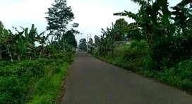 Tanah Datar Pinggir Jalan Dijual Murah d Purwakarta Dekat Objek Wisata