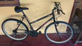 Sepeda MTB federal ori