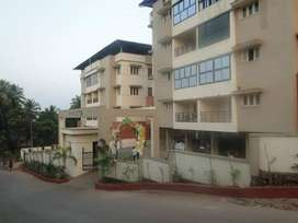 One BHK for sale