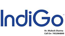 Airport Jobs- High Income Job(Blue & White collar job) IndiGo Airlines