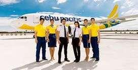 Airport job requirement