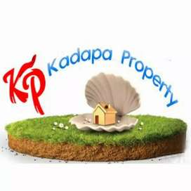 Kadapa lands property