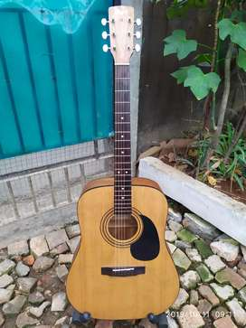 Gitar Cort AD 810e