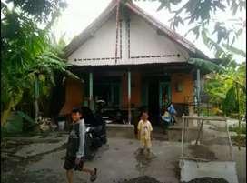 Rumah Peterongan Jombang