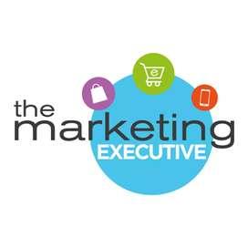 Opening Marketing executive / Experience