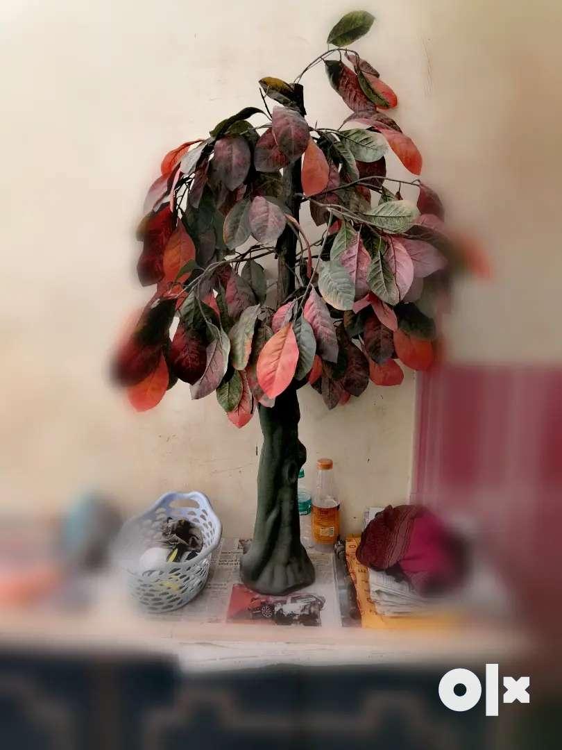 A two to three feet decorative tree 0
