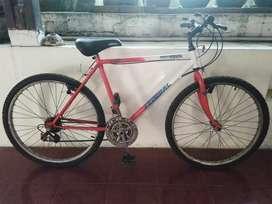 Sepeda Federal City Cat Merah Putih