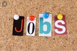 Required Computer Operator In ecommerce Company