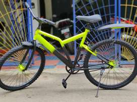 Fully customized single speed bicycle