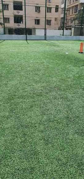 Cricket or football Turf