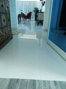 Painter for interior and exterior work