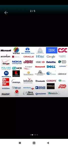 IT jobs in MNC companies- software jobs