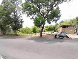 Tanah Kavling Murah Cocok Investasi Jln Godean km 6 Sidomoyo