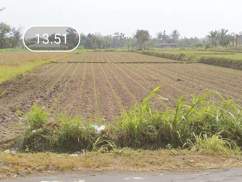 Tanah nyaman pinggir jalan utama jalan kabupaten utara ringroad