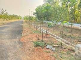 kothavalasa residential plots for sale