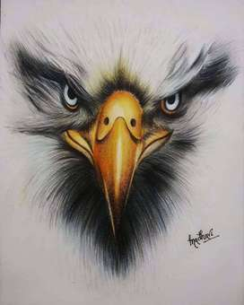 The Angry Eagle