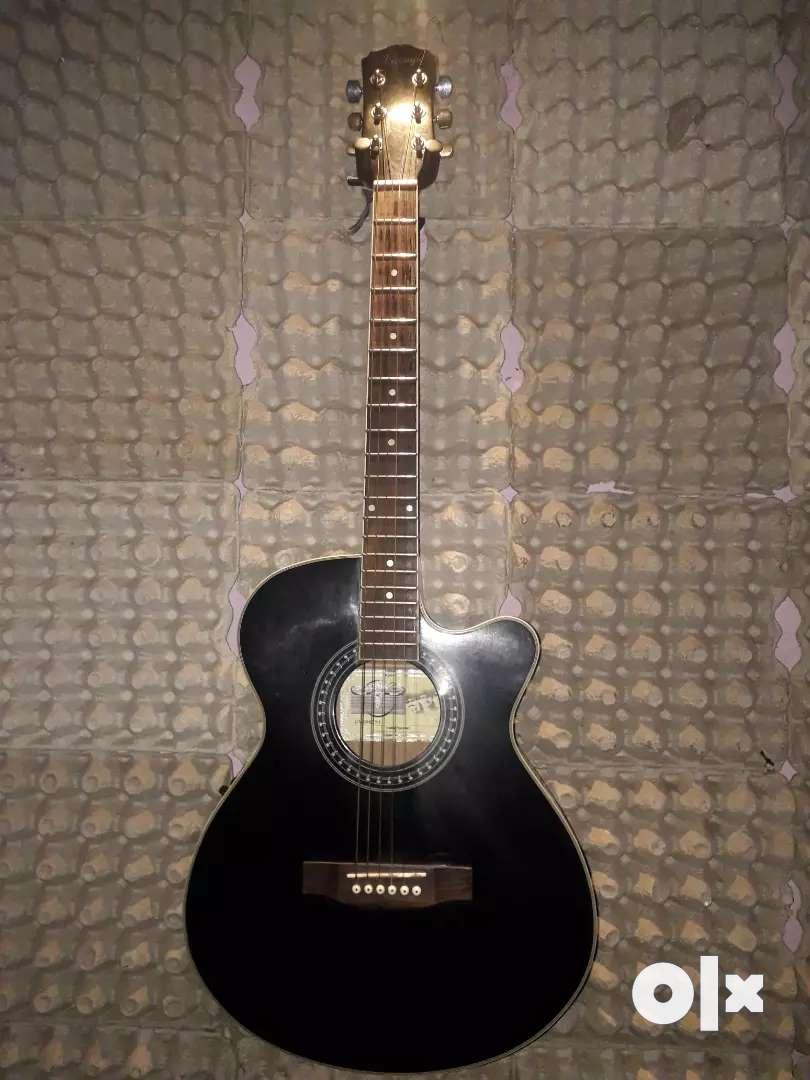 Semi Acoustic Guitar 0